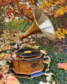 Retro gramofon s troubou vintage
